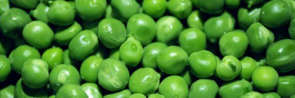 Petit pois : légume ou féculent ?